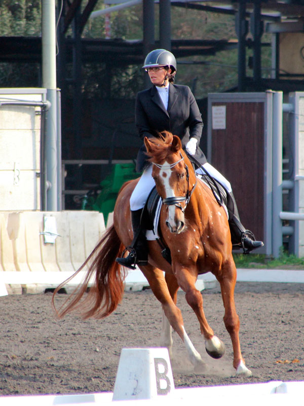 Revital Salomon and Talo Dressage Lady