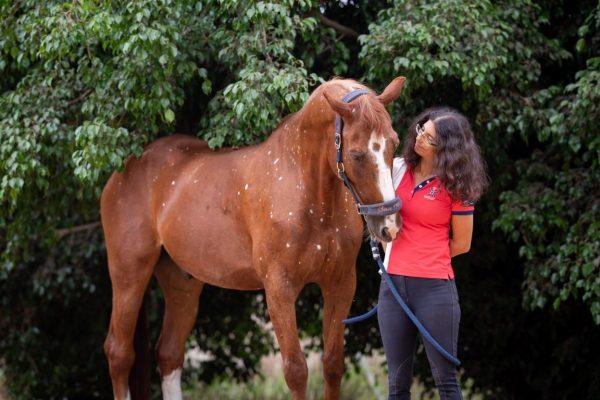 Birdcatcher spots - Talo the horse